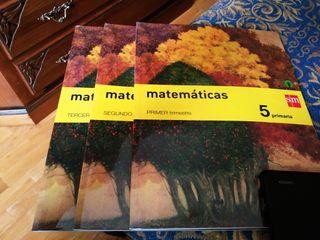 Carmelitas: Los 3 libros matemáticas 5 Primaria
