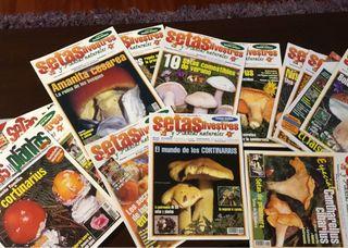 Revistas setas