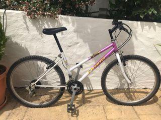 Bicicleta con marchas 15 pulgadas