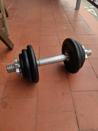 Mancuerna/pesa 12 kg