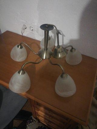 lampra