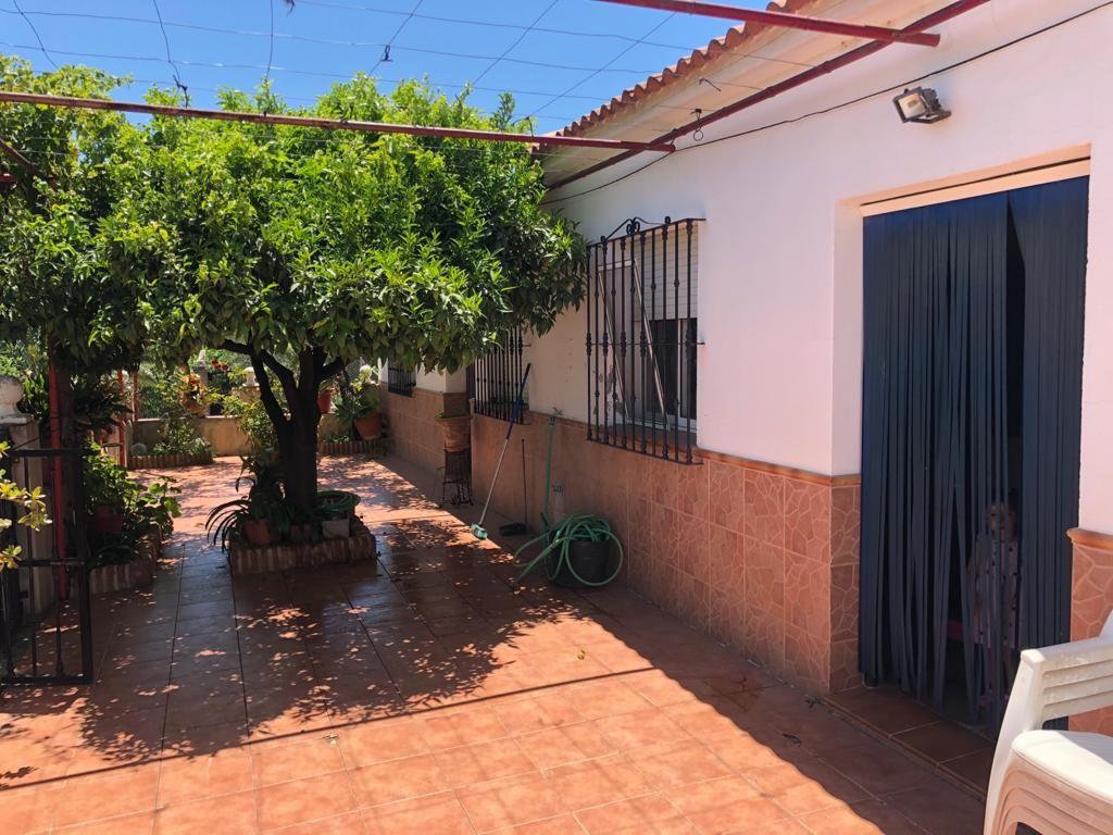 Vivienda con arboles frutales Álora (Málaga) (Álora, Málaga)