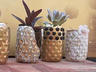 jarrones de plàstico con planta