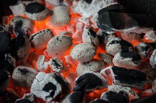 Carbón de encina premium hostelería y barbacoa