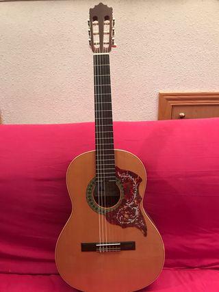 Guitarra Paco Castillo