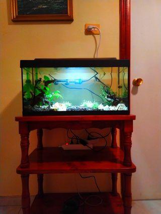 acuario 55 litros con mesa