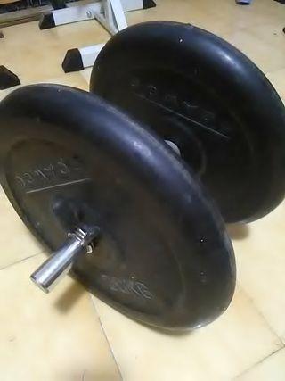 mancuerna 42 kg