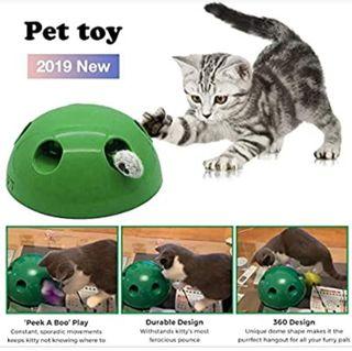 juego interactivo gatos