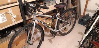 Bicicleta Riverside 120