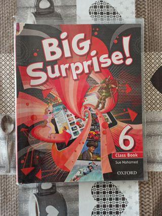 BIG SURPRISE 6 Class book