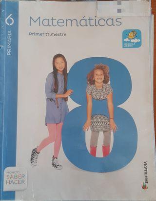 Matemáticas sexto de primaria