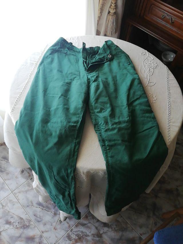 pantalon motosierra