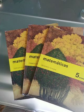 Libro Matemáticas 5° Primaria SM
