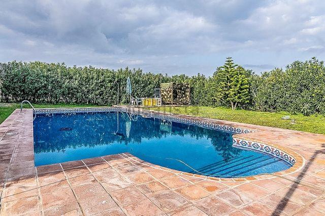 Magnifica finca de 28000m2 con 2 viviendas, piscina, padel, cuadras, 600 frutales... (Cártama, Málaga)