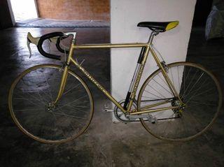 Bicicleta Bottecchia Campione del mondo 1966