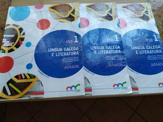 Lingual galega e literatura