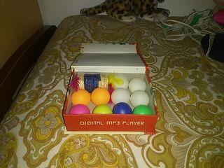 pelotas pin pon y juguete gato
