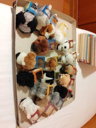 Colección The Dog Collection