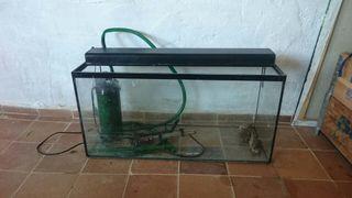 Pecera / Terrario 70 litros