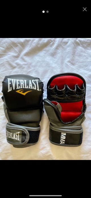 EVERLAST - BOXING TRAINING GLOVES