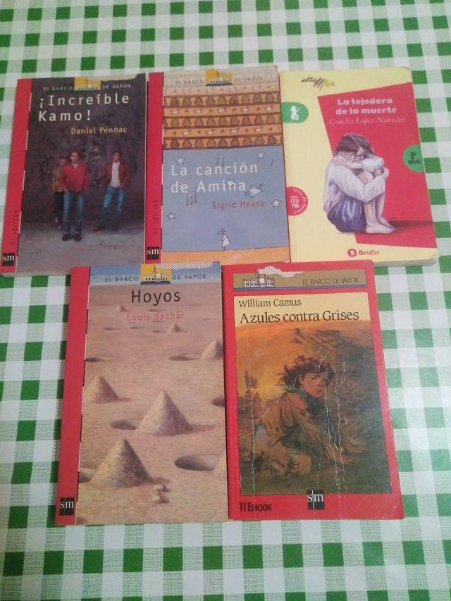 Libros de lectura de El barco de Vapor y Bruño