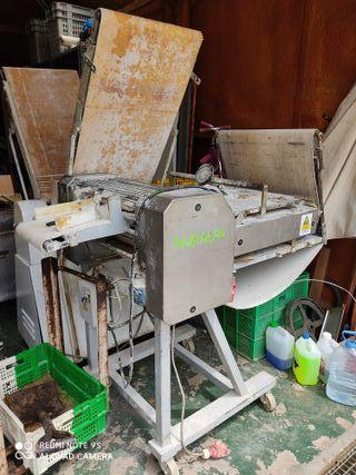 laminadora formadora de pan