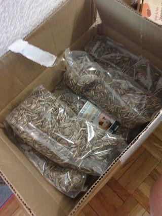 Bolsas de semillas de girasol