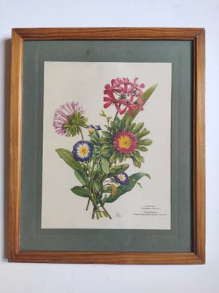 Cuadro Vintage Flores