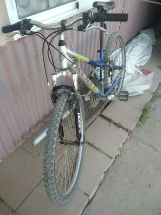 bici Monty de montaña