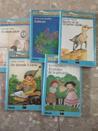 Libros Colección Barco de Vapor 7 años