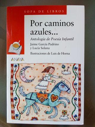 """Libro infantil """"Por caminos azules"""", +8 años"""