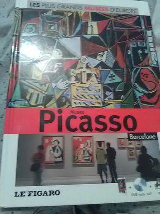 Livre Museu Picasso Barcelone