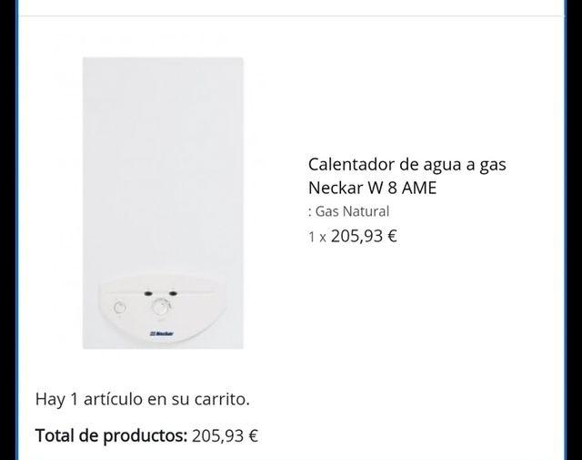Calentador de Gas estanco