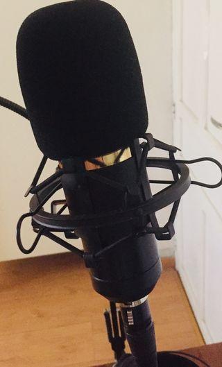 Micrófono Neewer Nw 800
