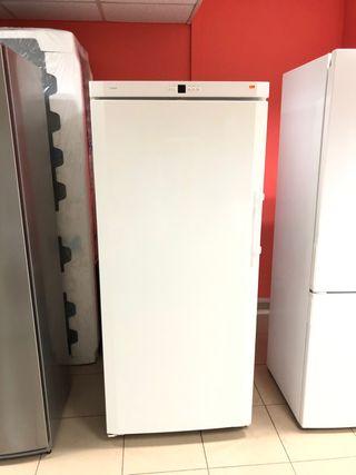 CONGELADOR INDUSTRIAL LIEBHERR 173x75cm, NO FROST