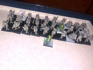 Pack de 31 Eslizones warhammer