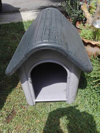 caseta o casa para perro