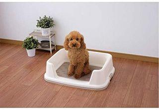 Baño para perro XS inodoro wc mascota