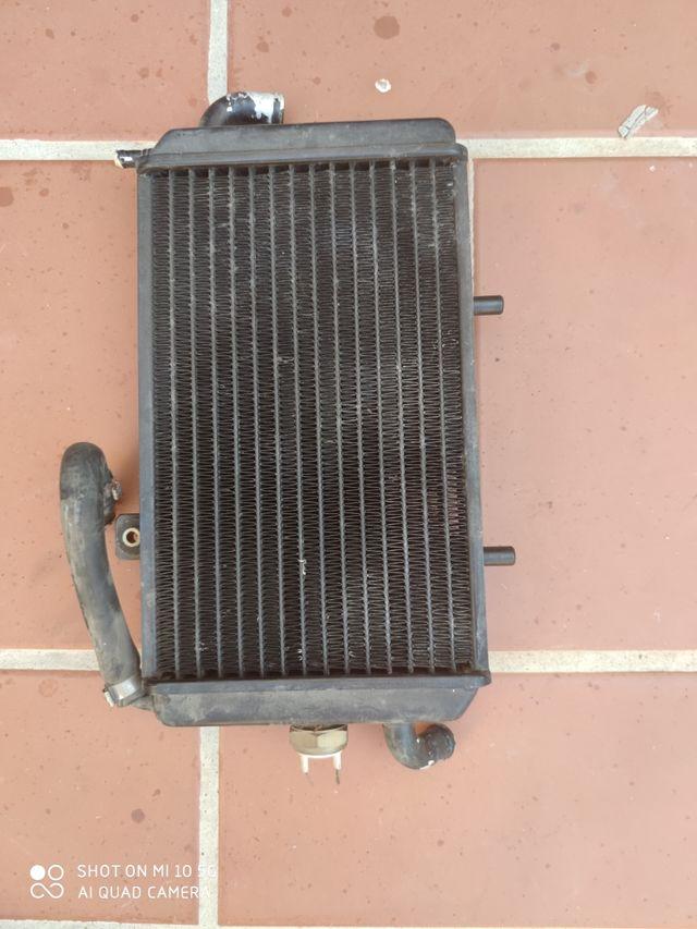 radiador para piaggio