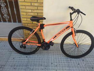 Bicicleta Runfit Sport adulto.