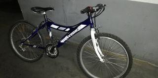 "Bicicleta niña y niño 24"""
