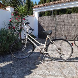 bicicleta holandesa paseo vintage