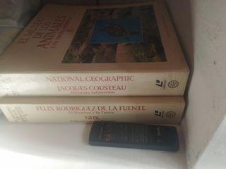 laser disc y coleccion national g. y r.de la fuent