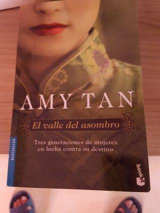 Libro AMY TAN