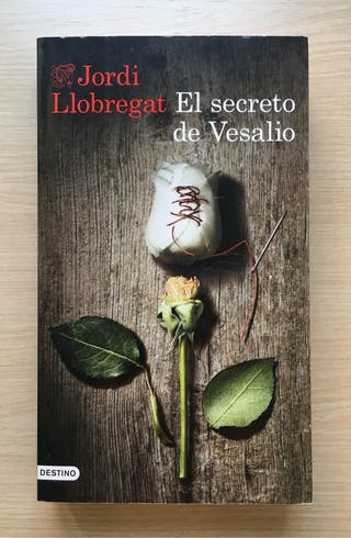 """Novela """"El secreto de Vesalio"""""""