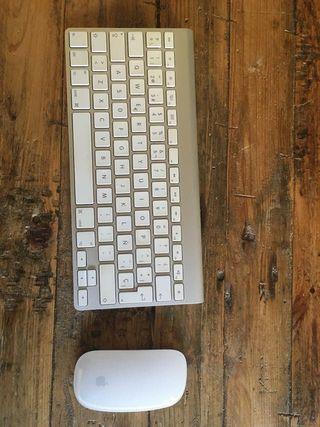 Apple Magic 1 (teclado y ratón)
