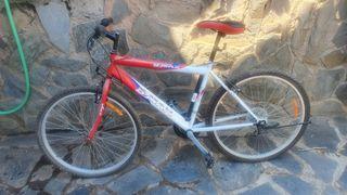 Bicicleta de montaña B-Max