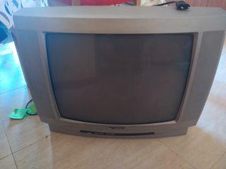 televisor de culo