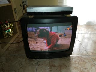 "TV Sanyo 14"" + TDT Thomson"