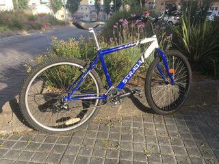 Bicicleta de montaña Strada Kaya